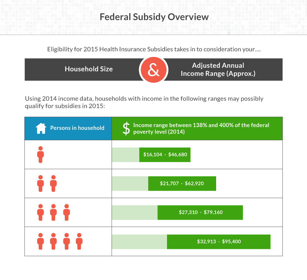 Government Subsidy Overview